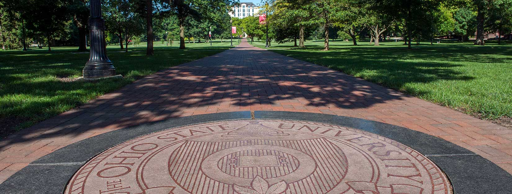 View down the path towards Thompson Library on the oval